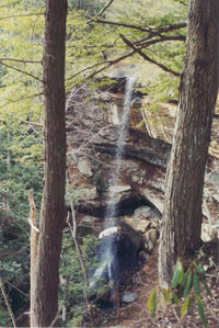 A tranquil waterfall, one of the many natural wonders of Red River Gorge in Menifee County, Kentucky.